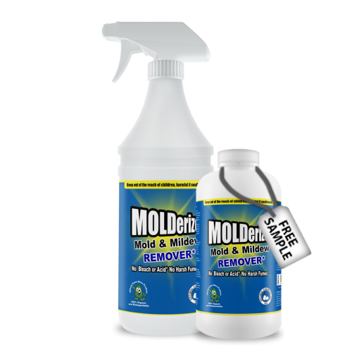 Remove Mold Without Evacuation Used By Remediation